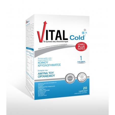 Vital Cold Για Το Κοινό Κρυολόγημα 20lipid caps