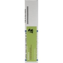 Korres Οδοντόκρεμα Λευκαντική Γλυκάνισος & Ευκάλυπτος 75 ml